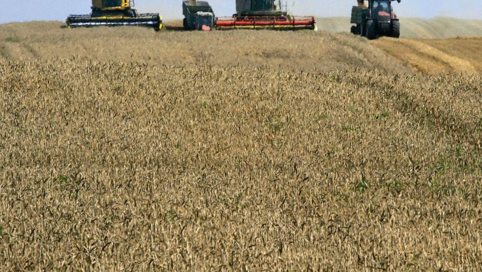 Wetter als Risikofaktor: Landwirte fürchten heiße Sommer ebenso wie heftige Unwetter. Doch sie sind längst nicht die einzigen Kunden der Wetterdatenanbieter