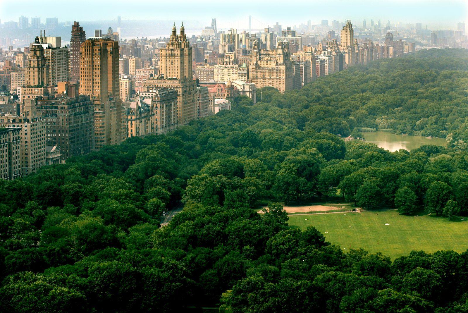 New York / Central Park