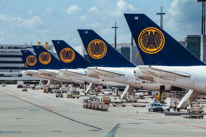 Einstieg zum Schnäppchenpreis? Staat und Lufthansa ringen um die Rettungsdetails.