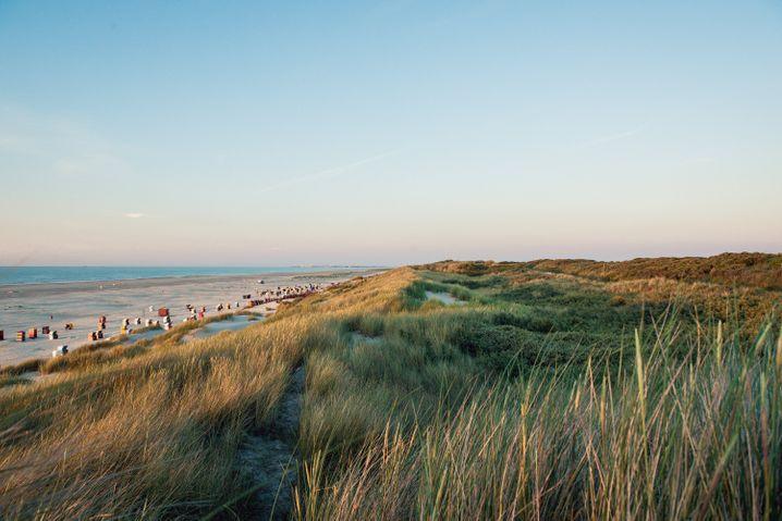 Für kilometerlange Spaziergänge am Meer: Strand mit Dünen auf Juist.