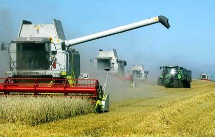 Dauerstreitpunkt Landwirtschaft: Die G4-Handelsmächte konnten sich nicht auf einen Abbau von Agrarsubventionen einigen