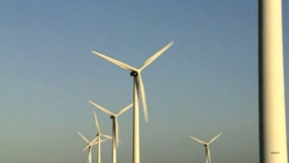 Windkraftanlagen: Hier sieht MVV neue Chancen auch für kleinere Investoren