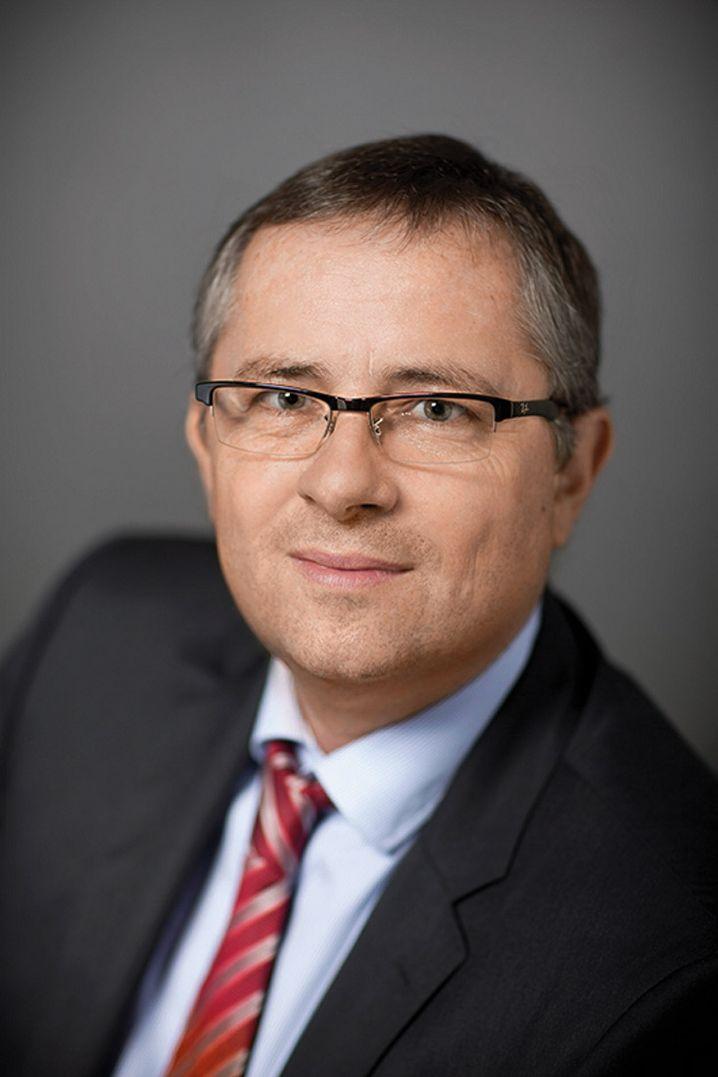 Holger Steltzner