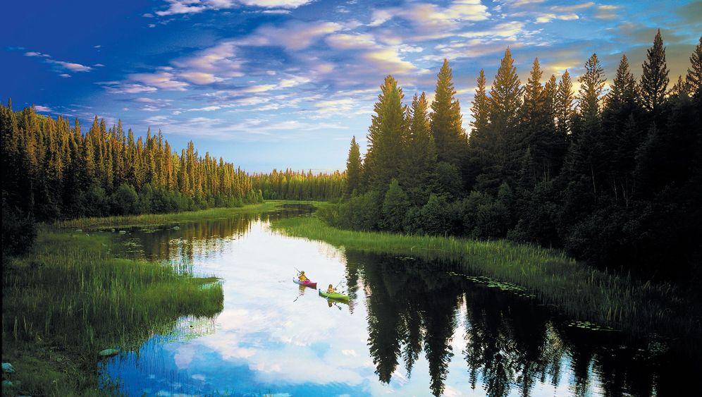 Kanadas wilder Westen: Wenn der Bär kommt