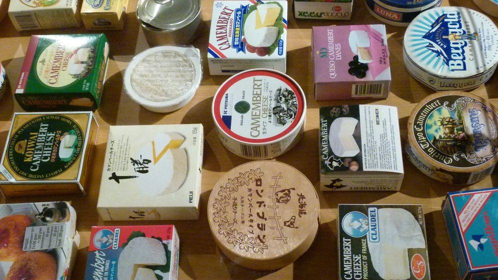 Normannische Rohmilchkäse: Ein Genuss für Kenner