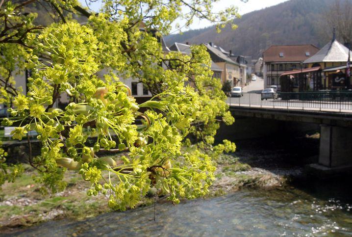 Urlaubstipp in Mitteldeutschland: Schwarzburg im ostthüringischen Schwarzatal ist ein idealer Ausgangspunkt für Ausflüge in das Thüringer Schiefergebirge.