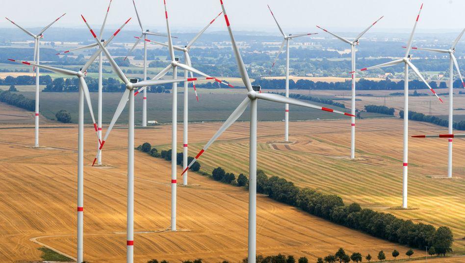 Windräder in Mecklenburg-Vorpommern: Die Branche ist unzufrieden mit Berlins Energiepolitik.
