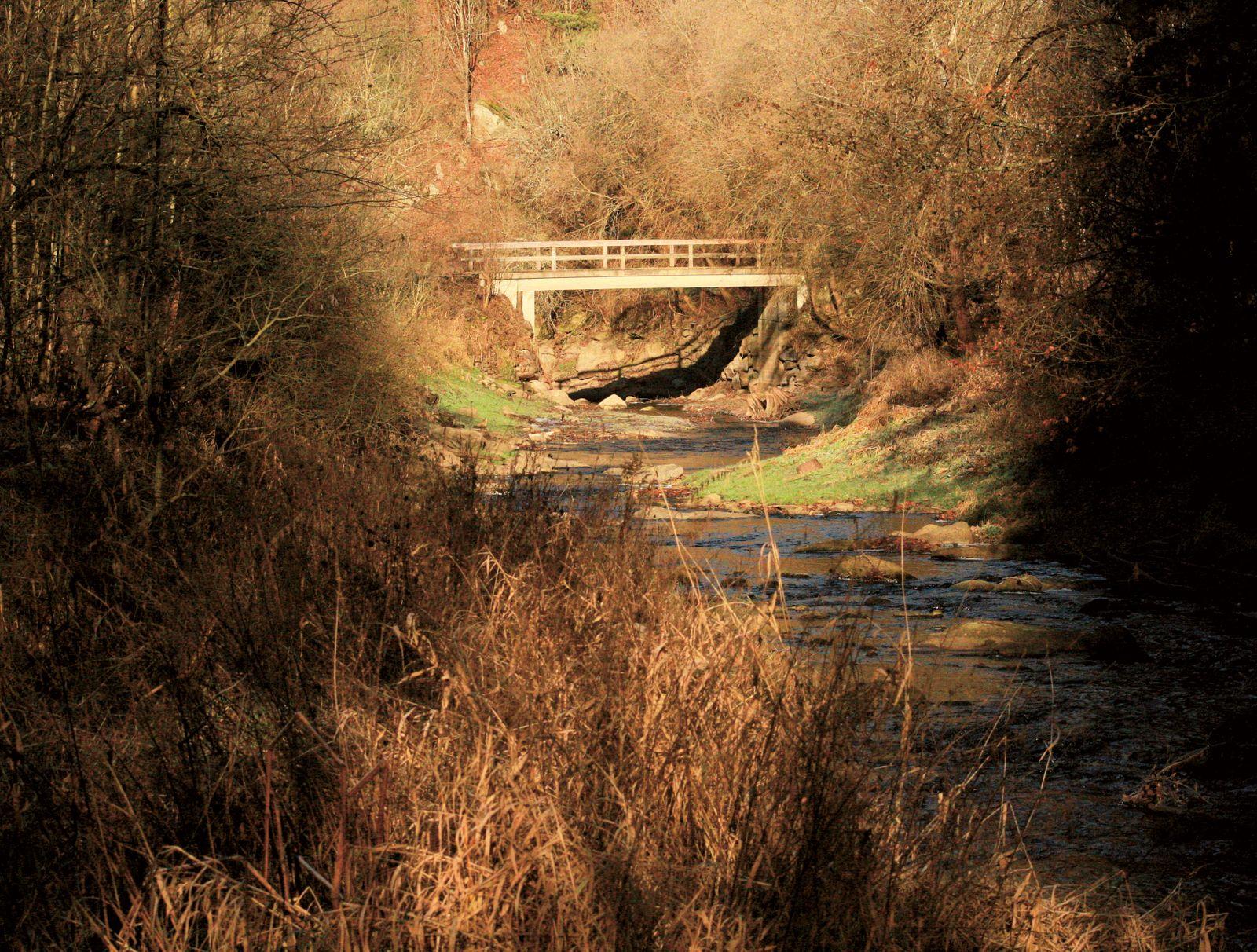 BUCH Martin Burger / Gehen auf alten Wegen / Brücke über den Purzelkamp