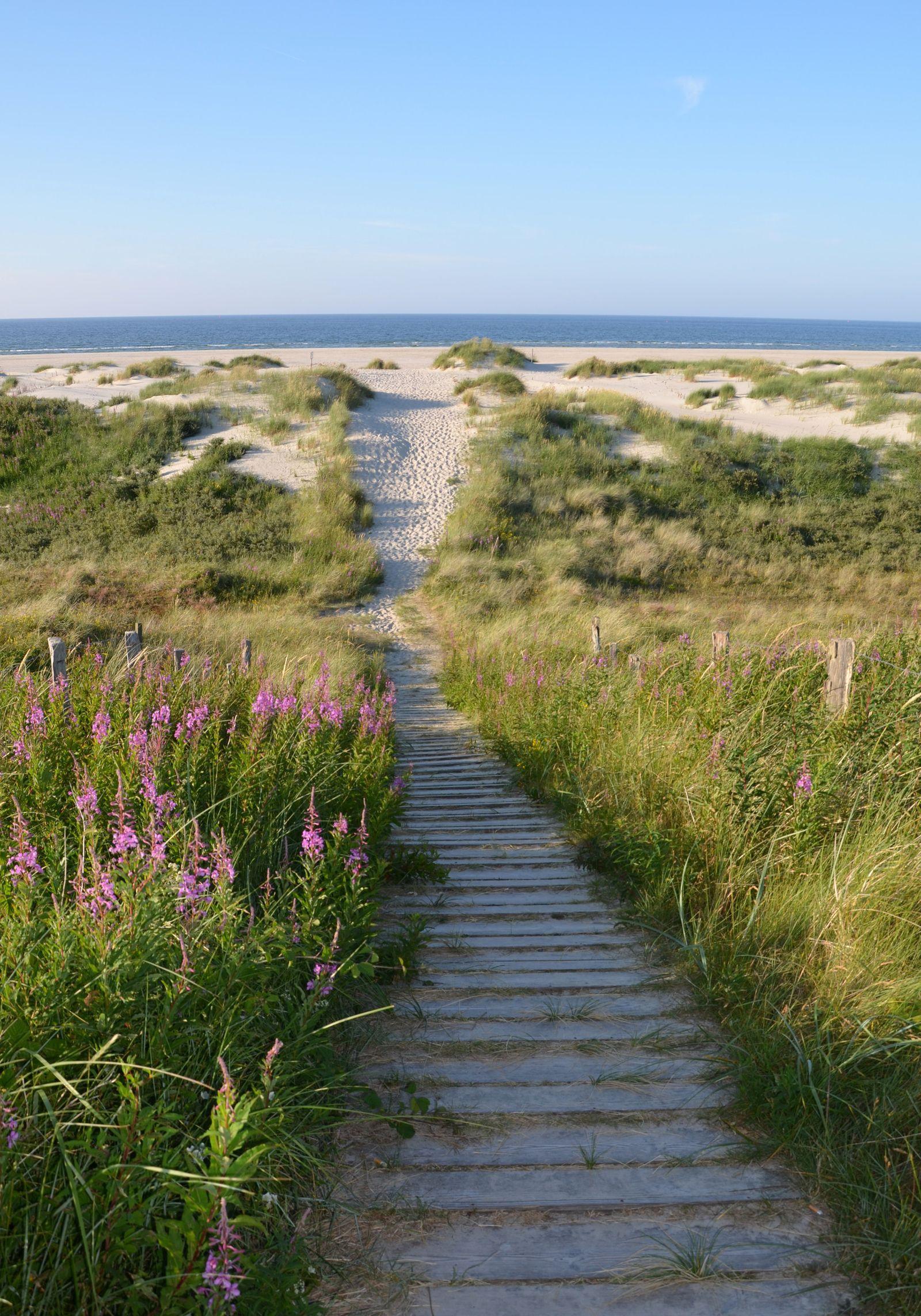 Nordsee: Die schönsten Inseln des Wattenmeers