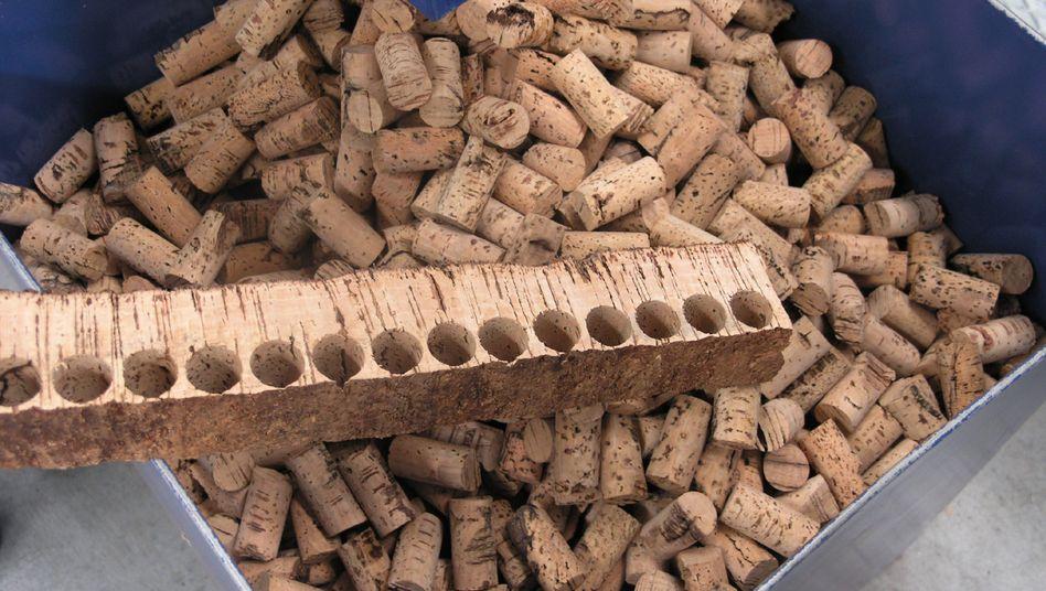 Verkorkt: Aus einer dicken Rindenplatte werden die Flaschenverschlüsse ausgestanzt