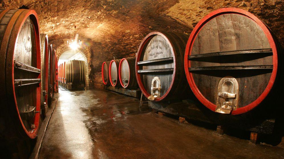 Aromatische Weine: Empfehlungen für Genießer