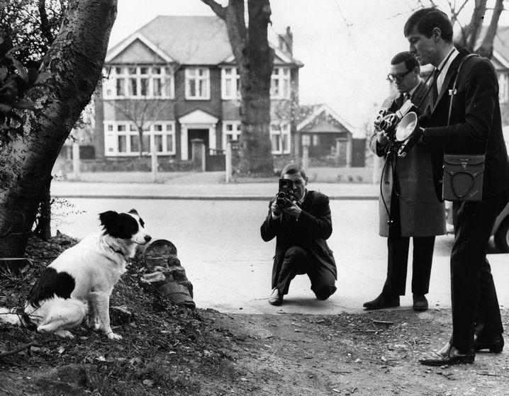 In den späten 60er Jahren ein Star in Großbritannien: der Hund Pickles (links)