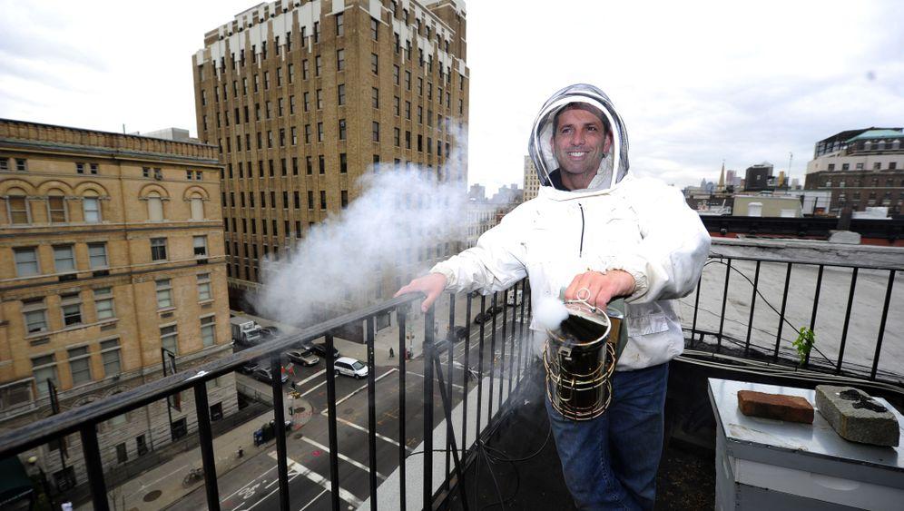 New Yorker Dächer: Gärtneridylle in luftiger Höhe