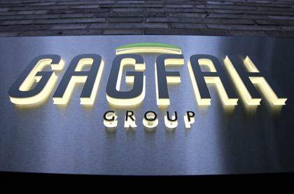 Seit vier Monaten börsennotiert: Verschmelzungsplan für Gagfah