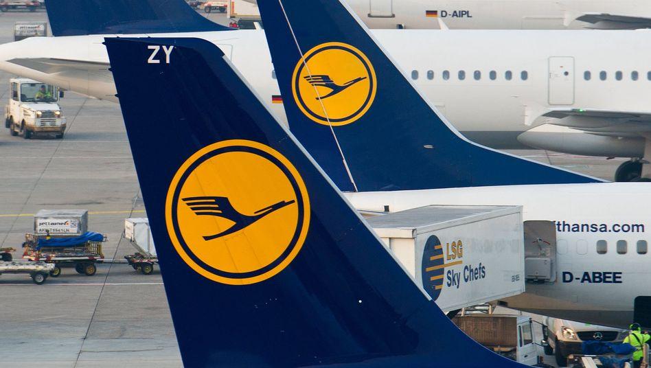 Lufthansa-Maschinen am Flughafen in Frankfurt am Main (Archivbild)