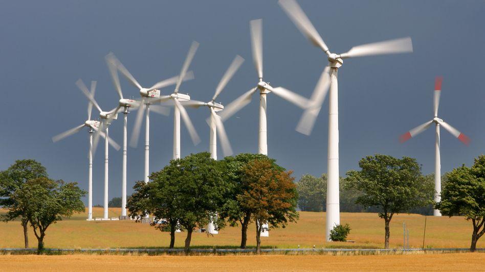 Windpark in Nordvorpommern: Große Mengen an Ökostrom drücken den Preis für Elektrizität an der Börse