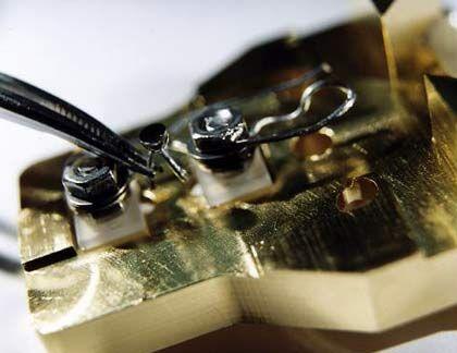 In der Zange ein Objektträger für Messungen im Rastertunnelmikroskop: Die dunkle Oberfläche ist platinbeschichtet