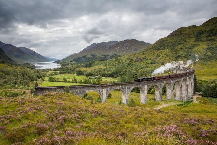 Wie im Harry-Potter-Film: Im Sommer passiert der Dampfzug The Jacobite vier Mal am Tag das Glenfinnan Viaduct.