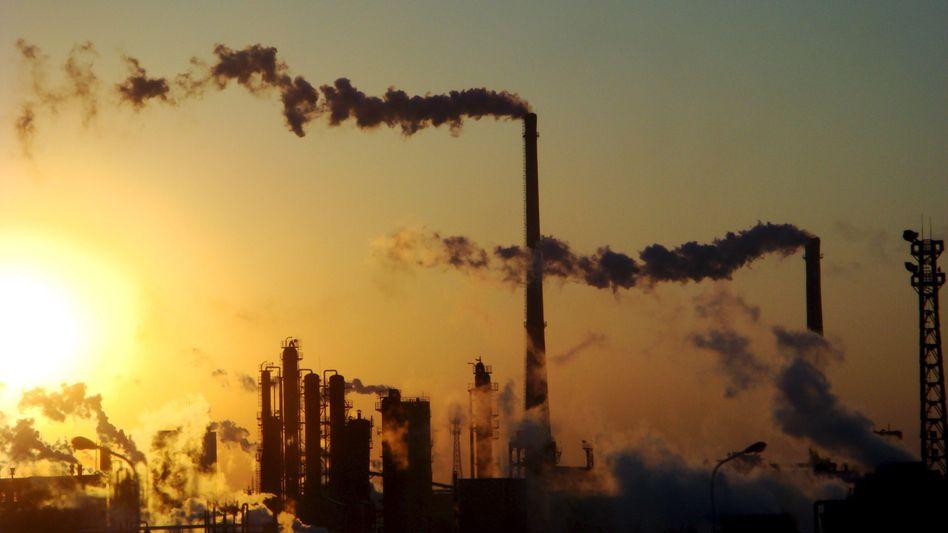 Chemiefabrik in China: Unter anderem gehören die Allianz, die Deutsche Bank und die UBS zu den Unterzeichnern der Petition