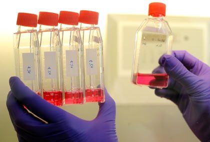 Forschung am Impfstoff: Die Pandemie beschert Pharmaunternehmen Gewinnzuwächse