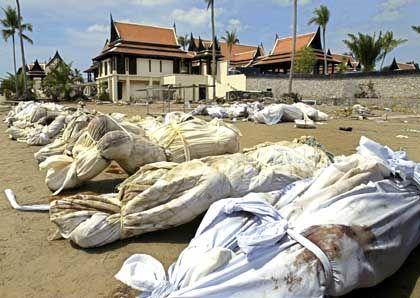 Die Unzählbarkeit der verwesenden Toten: Gefüllte Leichensäcke in Khao Lak