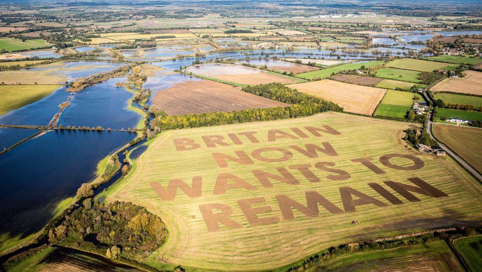 Anti-Brexit-Protest auf einem Feld in der Grafschaft Wiltshire