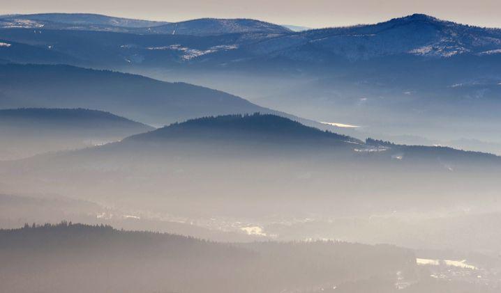 Land- und Forstwirtschaft, Tourismus, etwas Industrie: Aus dem Bayerischen Wald wandern die Jungen nicht ab
