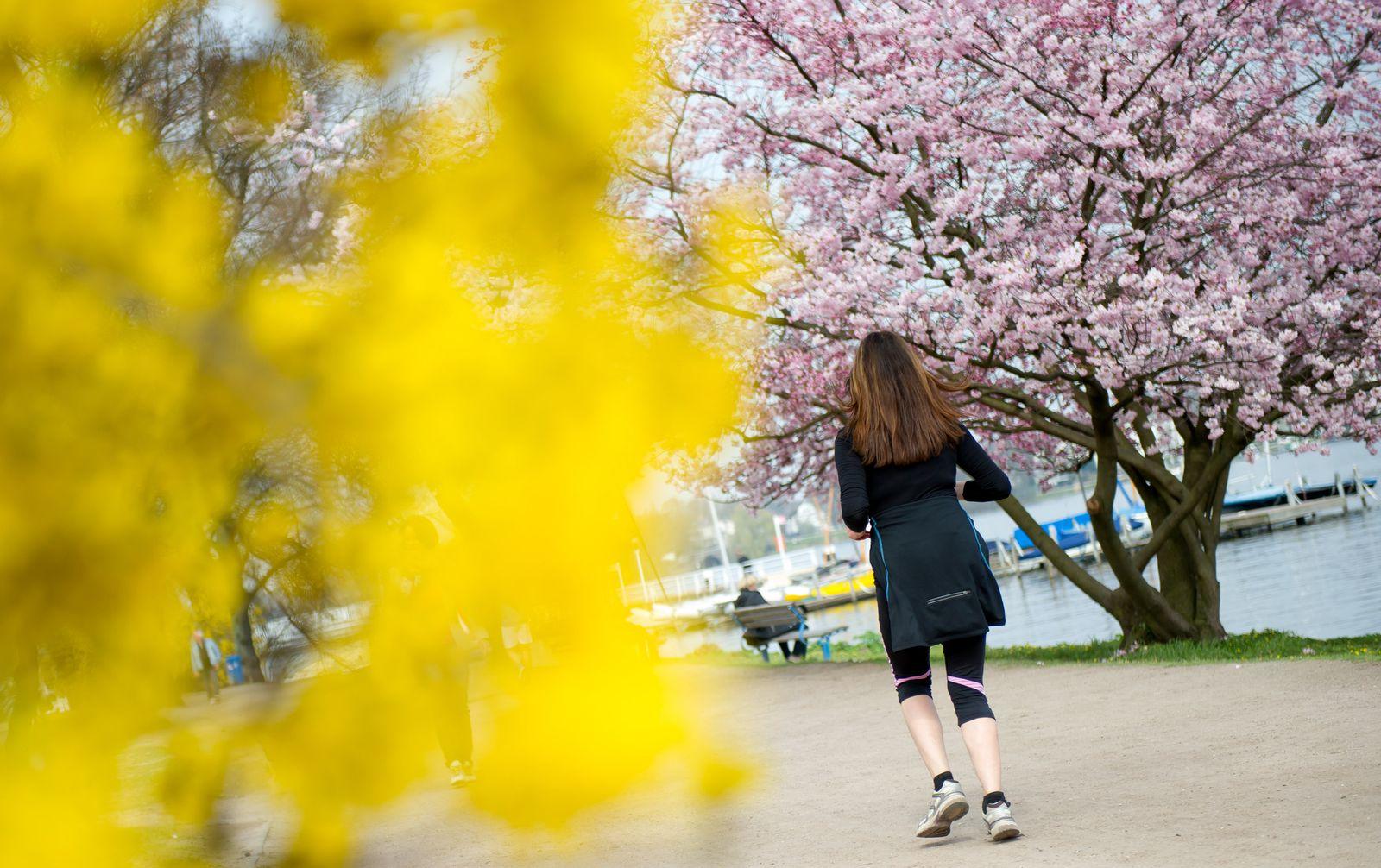 Alster Joggen Frühling