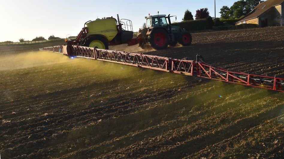 Monsantos umstrittener Unkrautvernichter Roundup im Einsatz (Archivaufnahme)