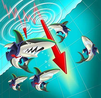 Üble Tricks: Gegen die Attacken der Finanzhaie haben viele Firmen keine Chance