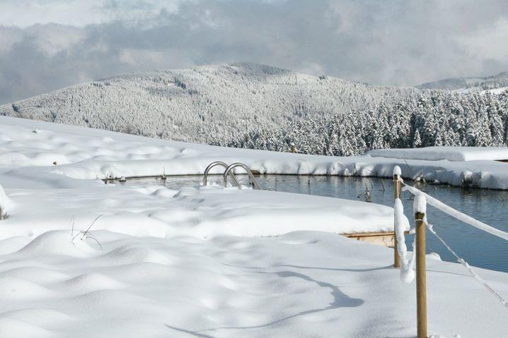 Sehr, sehr kaltes Abkühlbecken: Die Halde, Baden-Württemberg