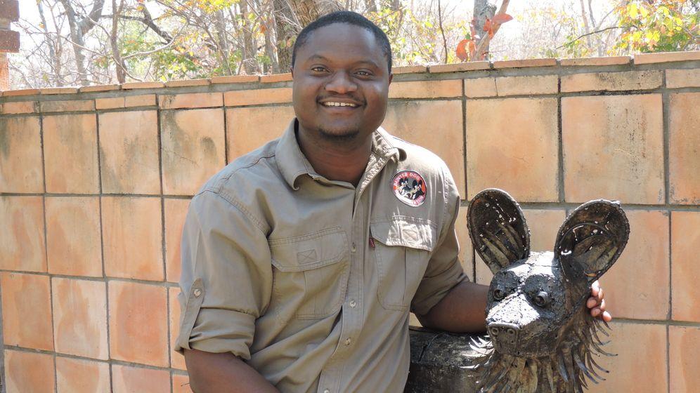 Afrikas Süden: Zwischen Löwenjagd und Massentourismus