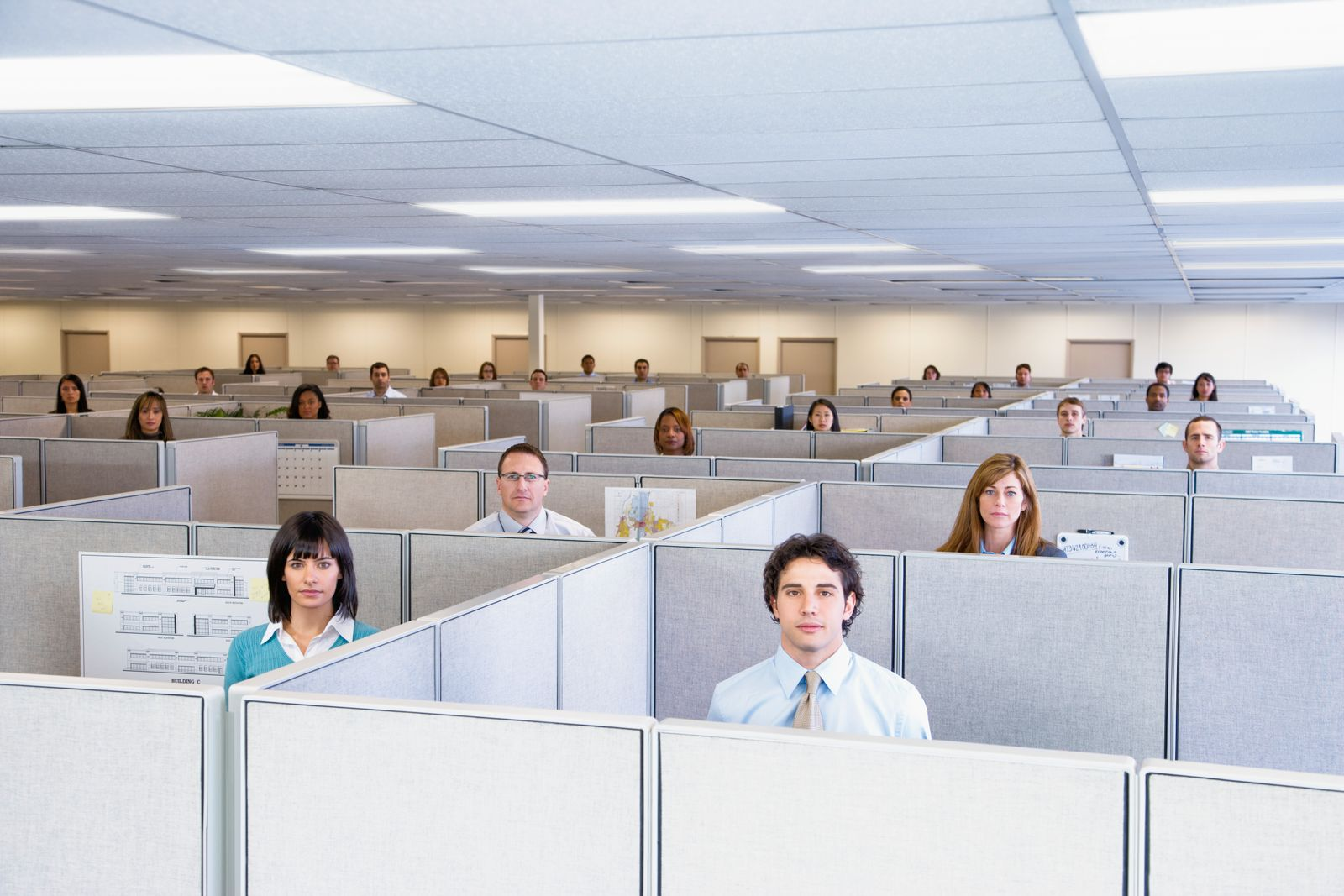 Large group of office workers, each standing in own cubicle, looking at camera, elevated view