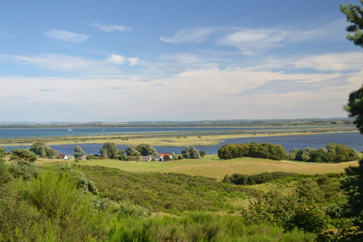 Viel Natur für Erholungssuchende: Auf Hiddensee geht es entspannter zu als auf der Nachbarinsel Rügen.