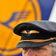 """Lufthansa einigt sich mit Piloten auf """"Sparbeitrag"""""""