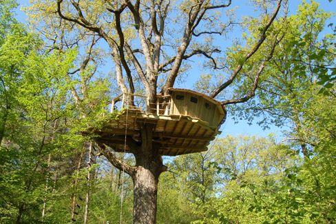 Lauschiges Plätzchen: Das Baumhaus im Baumwipfel lockt mit Anthro-Flair