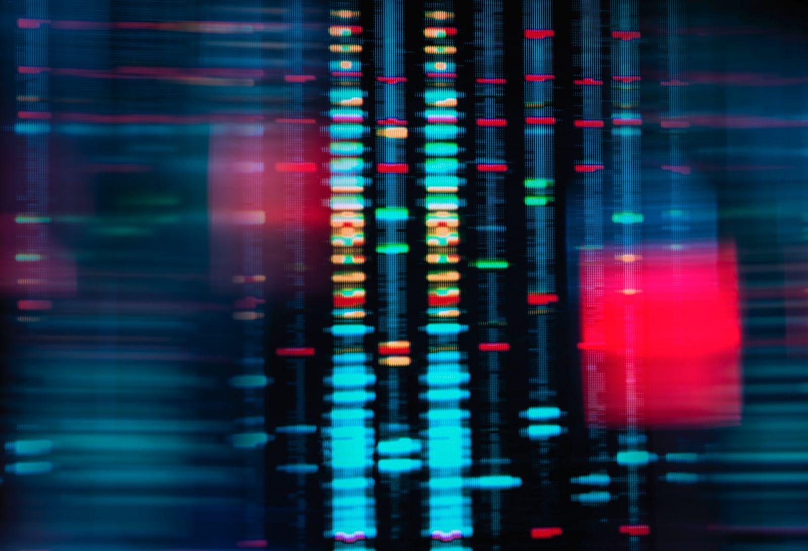 Digital screen showing DNA profile match