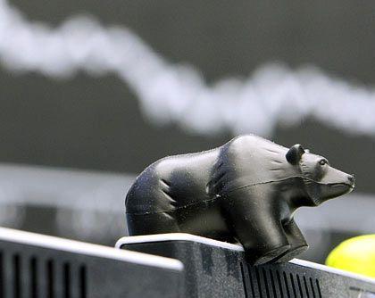 Bärenzeit: Die Börsen befinden sich im freien Fall