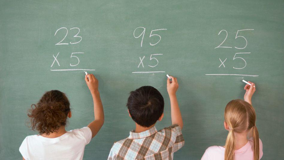 """Lernen in der Schule: Die """"Neue Schule Wolfsburg"""" arbeitet mit kleinen Lerngruppen, ist international ausgerichtet und als Gesamtschule organisiert"""