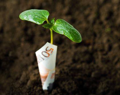 """Vermögensverwaltung: """"Die Branche wäre in der Lage, ihre Vertriebsphilosophie grundlegend zu ändern"""""""