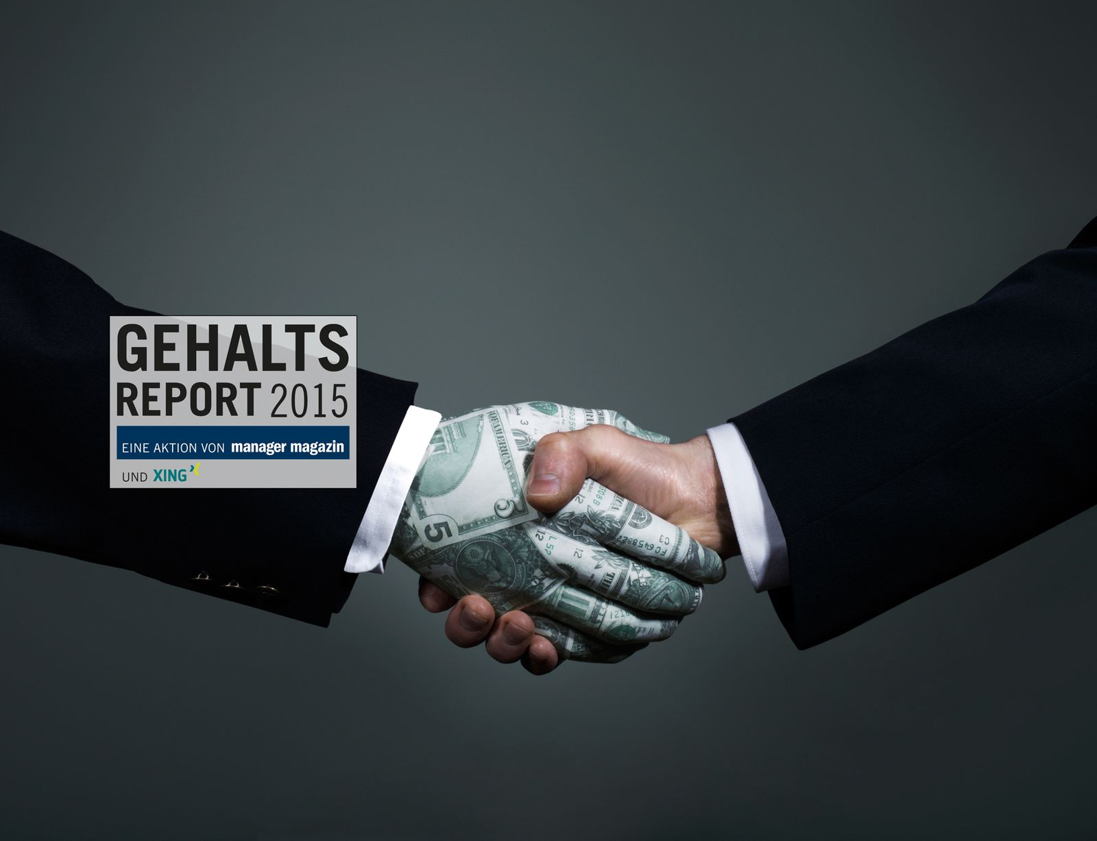 EINMALIGE VERWENDUNG Gehaltsreport 2015