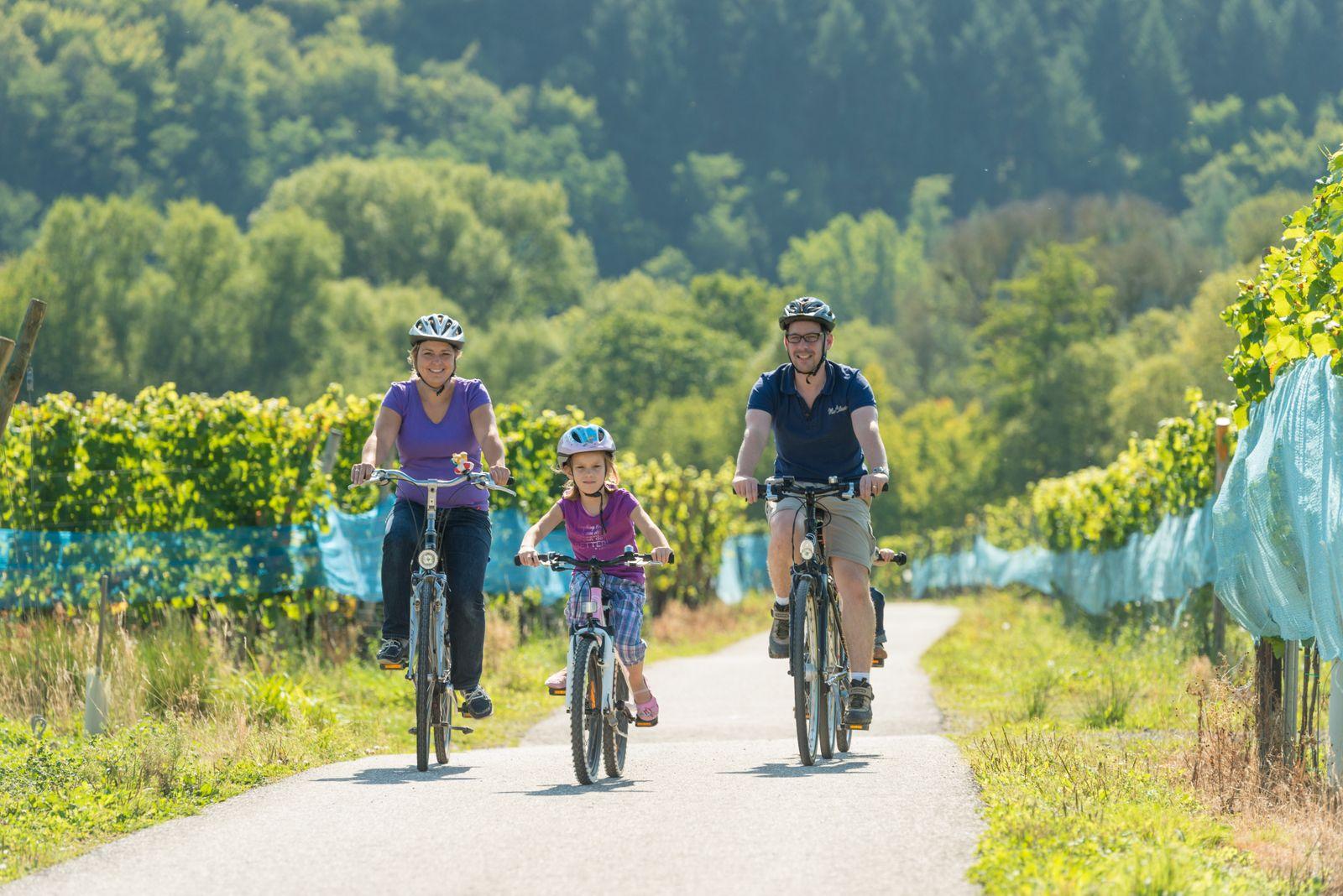 Familie Rad Weinlandschaften