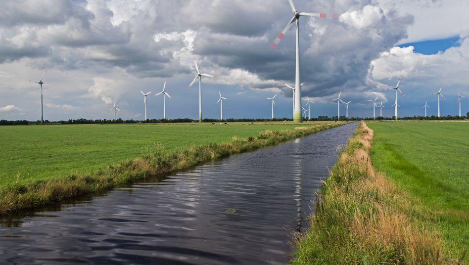 Windpark in Niedersachsen: Der Löwenanteil des Ökostroms stammte im ersten Halbjahr 2018 aus Windkraftanlagen