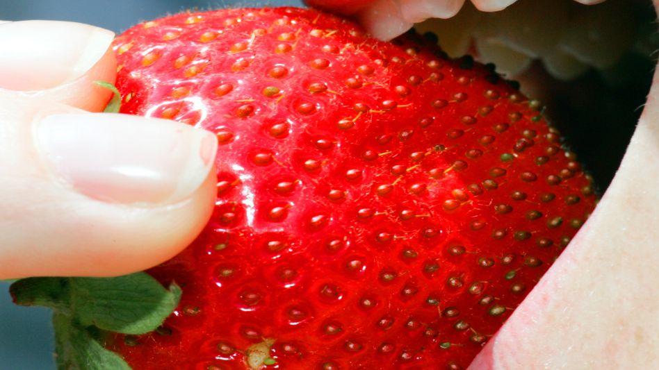 Unwiderstehlich: Erdbeeren wie diese - allerdings mit Schokolade überzogen - spielten beim Facebook-Whatsapp-Deal eine entscheidende Rolle