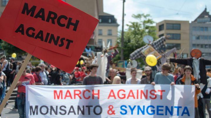 Im Sommer 2015 noch gab es Proteste gegen die geplante Übernahme der Schweizer Syngenta durch den Saatgut-Marktführer Monsanto. Jetzt macht sich das Schweizer Management für eine Übernahme durch ChemChina stark