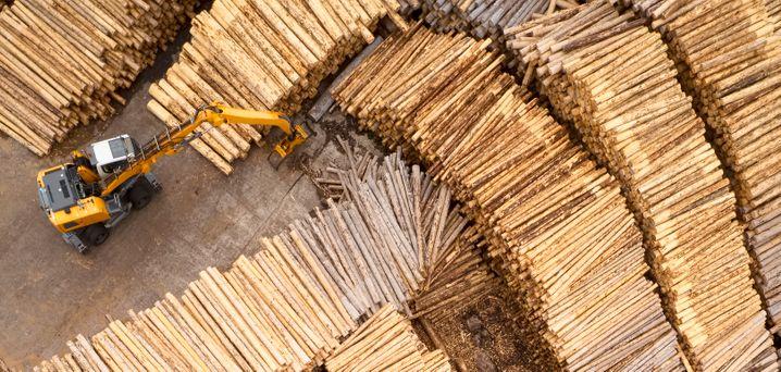 """""""Holz gibt es in ausreichender Menge"""", meint Experte Peter Aicher"""