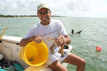 Erfolgreicher Fang: Der Amateurfischer Don Gomez hält vor Islamorada bei den Florida Keys einen Hummer in der Hand