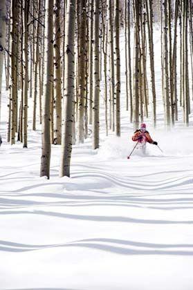 """Ab durch die Mitte: """"Tree Skiing"""" inmitten von Bäumen"""