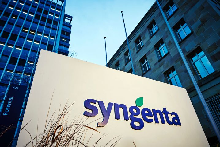 The logo of Swiss pesticide giant Syngenta is pictured at the companys headquarters in Basel on February 3, 2016, ahead of a press conference on the companys annual results. State-owned China National Chemical Corp., also known as ChemChina, on Wednesday announced a USD 43 billion offer to take over Swiss pesticide giant Syngenta, in what would be by far the biggest overseas acquisition by a Chinese firm. / AFP / MICHAEL BUHOLZER