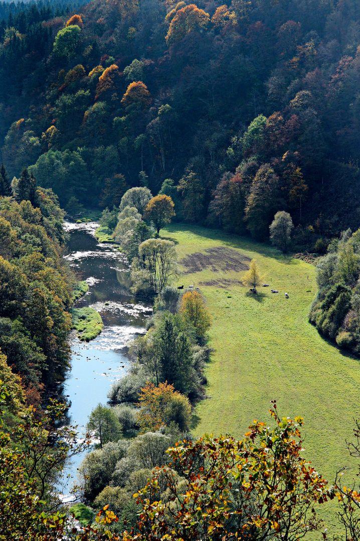Idyllisches Ourtal im Nationalpark Eifel - hier können Urlauber die Natur genießen.